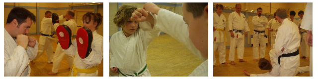 genjitsu karate pictures